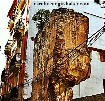 Carrer Salines Valencia